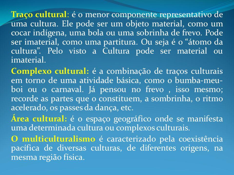 Traço cultural: é o menor componente representativo de uma cultura.