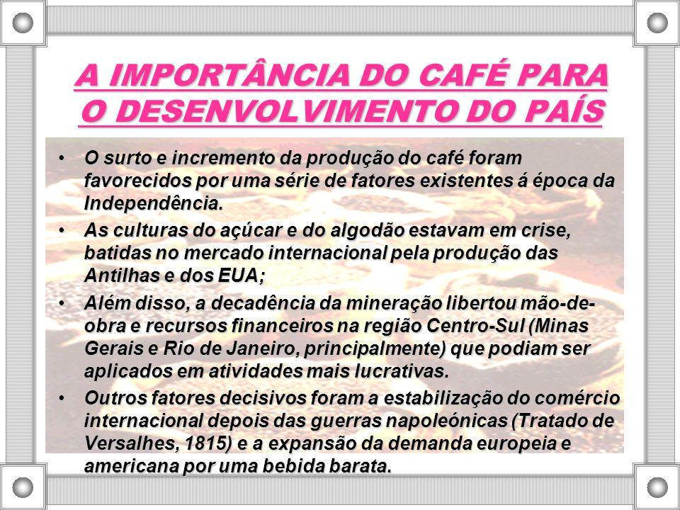 AS ÁREAS DE PLANTIO DA CAFEICULTURA O desenvolvimento da cafeicultura, deveu-se às condições geográficas excepcionais: clima adequado, regularidade das chuvas, solo tipo terra roxa etc.