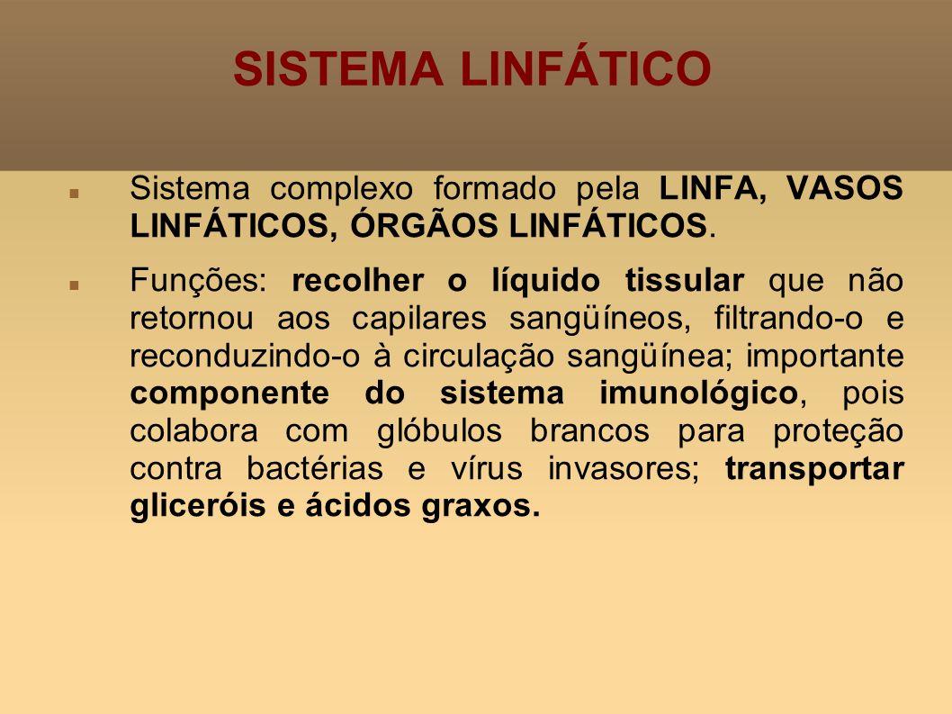 SISTEMA LINFÁTICO Sistema complexo formado pela LINFA, VASOS LINFÁTICOS, ÓRGÃOS LINFÁTICOS. Funções: recolher o líquido tissular que não retornou aos