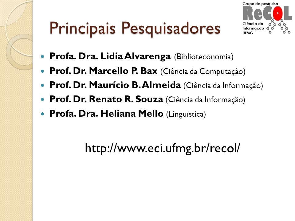 Principais Pesquisadores Profa. Dra. Lidia Alvarenga (Biblioteconomia) Prof. Dr. Marcello P. Bax (Ciência da Computação) Prof. Dr. Maurício B. Almeida