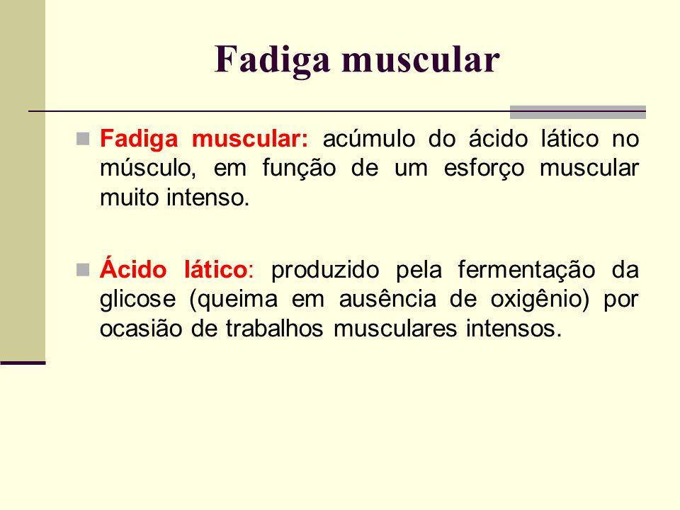 Fadiga muscular Fadiga muscular: acúmulo do ácido lático no músculo, em função de um esforço muscular muito intenso. Ácido lático: produzido pela ferm