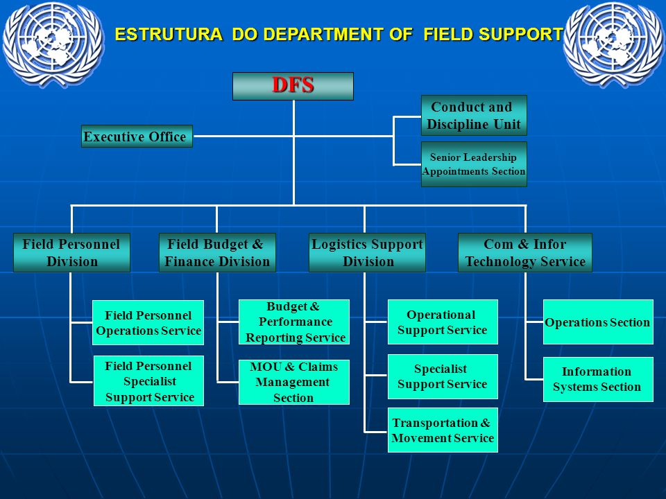ESTRUTURA DO DEPARTMENT OF FIELD SUPPORT Field Personnel Operations Service Field Personnel Division Field Personnel Specialist Support Service DFS Co