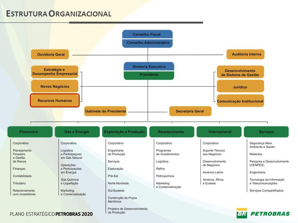 Mapeamento de competências e perfis profissionais Análise de relatórios Árvore de conhecimento do processo Mapeamento do processo Administração do ciclo de avaliação Realização do ciclo de avaliação COMPETÊNCIAS INDIVIDUAIS ESPECÍFICAS - ETAPAS Processo de Diagnóstico de Competências