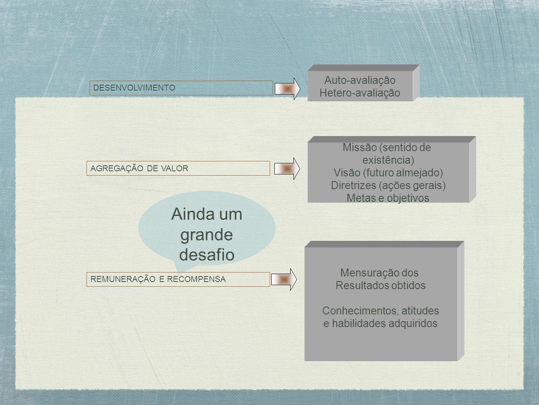 DESENVOLVIMENTO Auto-avaliação Hetero-avaliação AGREGAÇÃO DE VALOR Missão (sentido de existência) Visão (futuro almejado) Diretrizes (ações gerais) Me