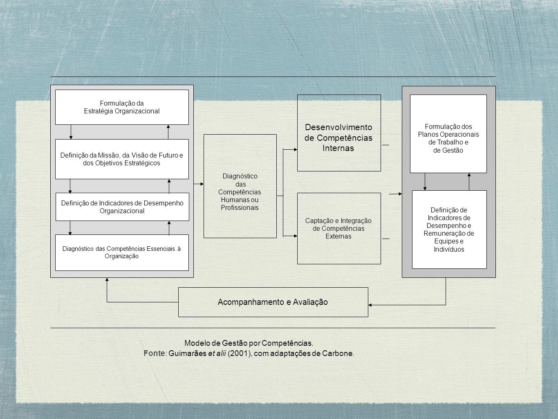 Diagnóstico das Competências Humanas ou Profissionais Acompanhamento e Avaliação Captação e Integração de Competências Externas Desenvolvimento de Com