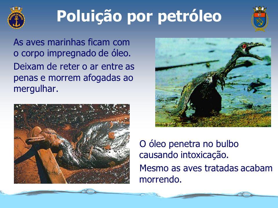Poluição por petróleo A quantidade de oxigênio diminui e outras espécies acabam morrendo. Os peixes da superfície morrem por intoxicação e falta de ox