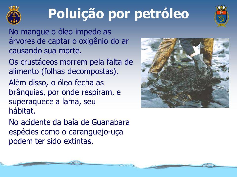 Poluição por petróleo As aves marinhas ficam com o corpo impregnado de óleo. Deixam de reter o ar entre as penas e morrem afogadas ao mergulhar. O óle