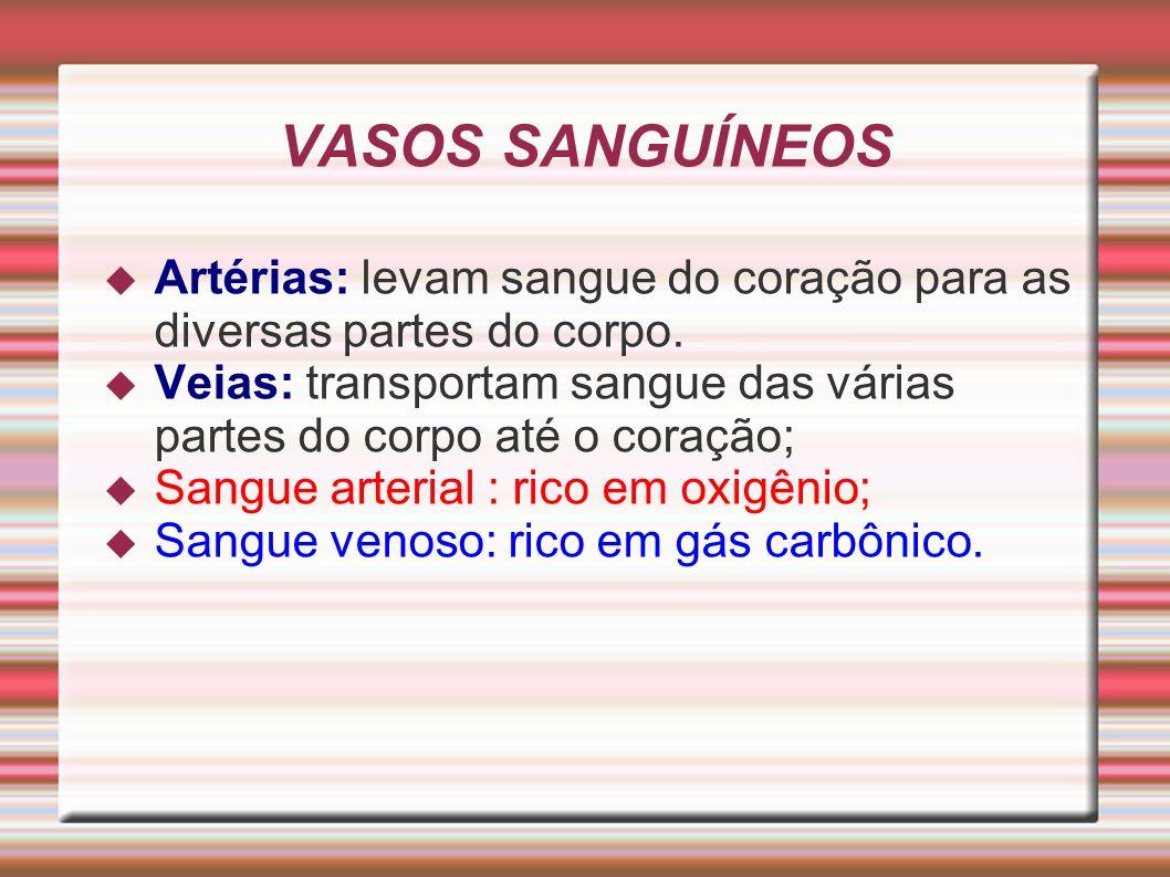 VASOS SANGUÍNEOS Artérias: levam sangue do coração para as diversas partes do corpo. Veias: transportam sangue das várias partes do corpo até o coraçã