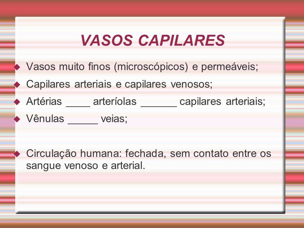VASOS CAPILARES Vasos muito finos (microscópicos) e permeáveis; Capilares arteriais e capilares venosos; Artérias ____ arteríolas ______ capilares art