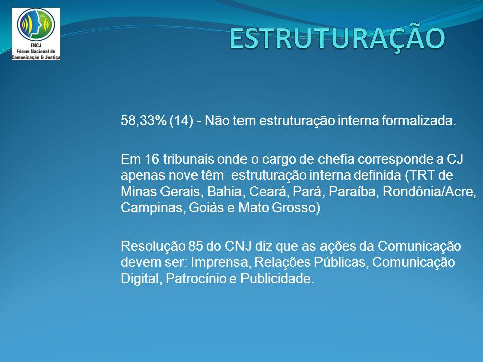 58,33%(14) - Não tem estruturação interna formalizada.