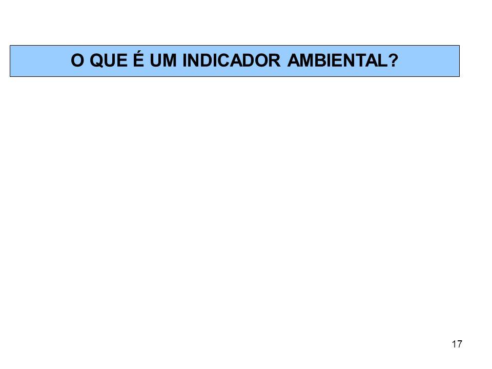 17 O QUE É UM INDICADOR AMBIENTAL?