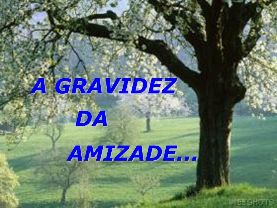 Autor Desconhecido A GRAVIDEZ DA AMIZADE...