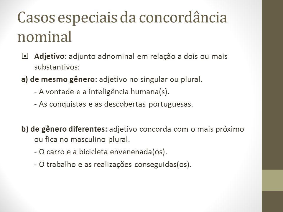 Casos especiais da concordância nominal Adjetivo: adjunto adnominal em relação a dois ou mais substantivos: a) de mesmo gênero: adjetivo no singular o