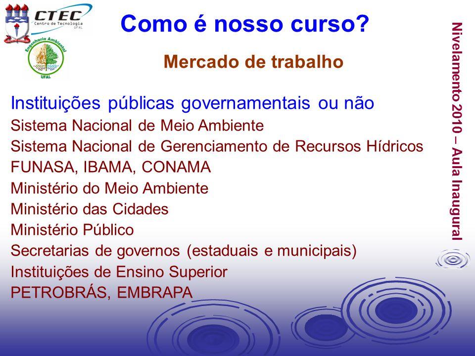 Nivelamento 2010 – Aula Inaugural Instituições públicas governamentais ou não Sistema Nacional de Meio Ambiente Sistema Nacional de Gerenciamento de R