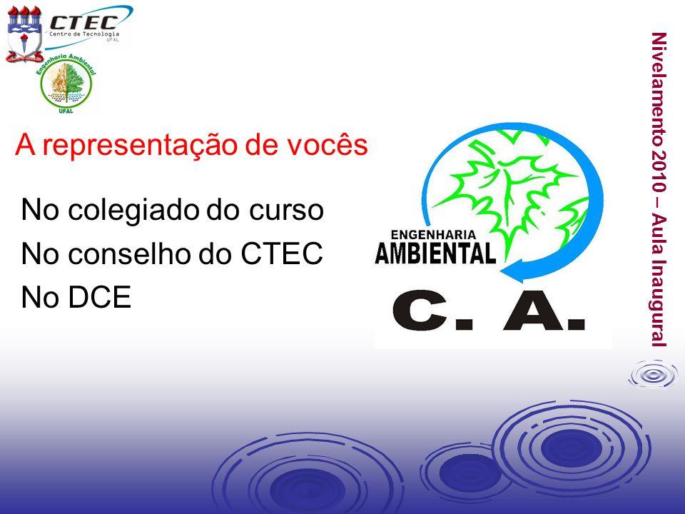 Nivelamento 2010 – Aula Inaugural A representação de vocês No colegiado do curso No conselho do CTEC No DCE