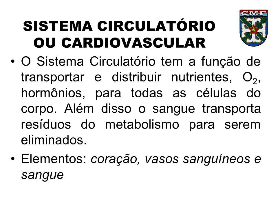 SISTEMA CIRCULATÓRIO SANGUE: função – transportar nutrientes, gases, hormônios e resíduos Composição – plasma, eritrócitos, leucócitos e plaquetas 1.