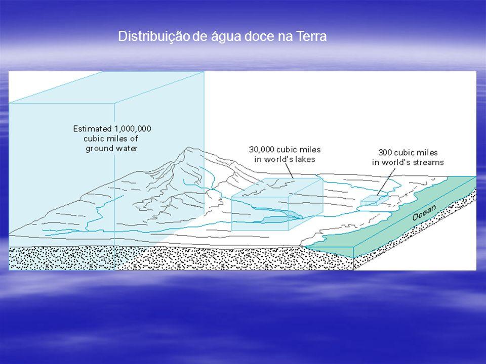 O Brasil dispõe da maior reserva de água doce do planeta.