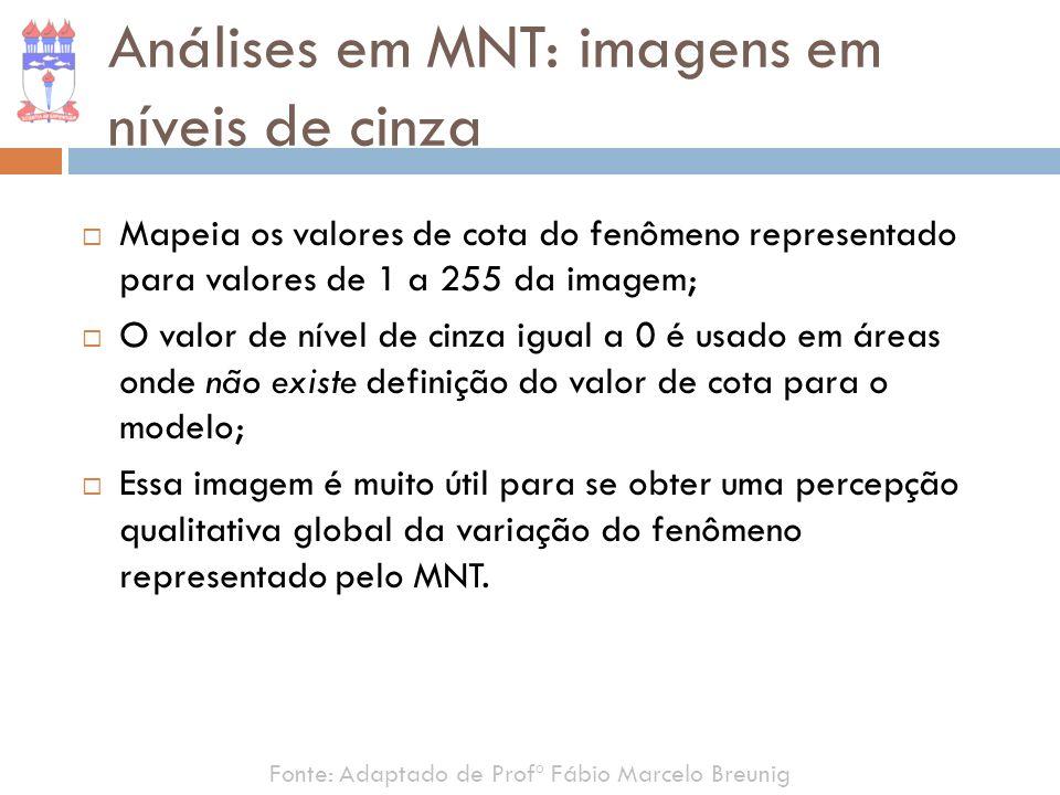 Mapeia os valores de cota do fenômeno representado para valores de 1 a 255 da imagem; O valor de nível de cinza igual a 0 é usado em áreas onde não ex