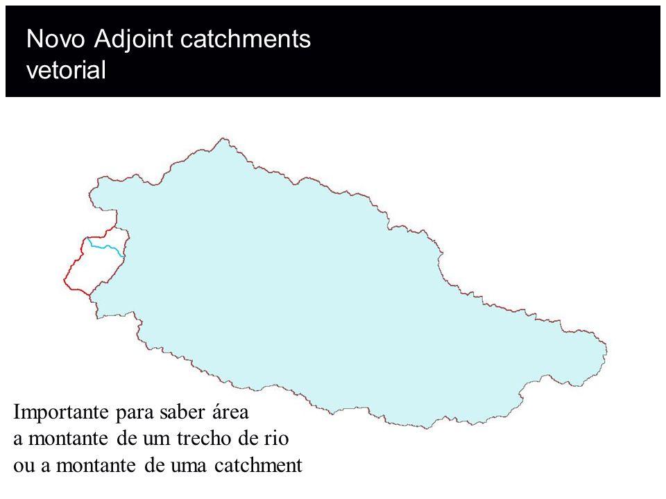 Novo Adjoint catchments vetorial Importante para saber área a montante de um trecho de rio ou a montante de uma catchment