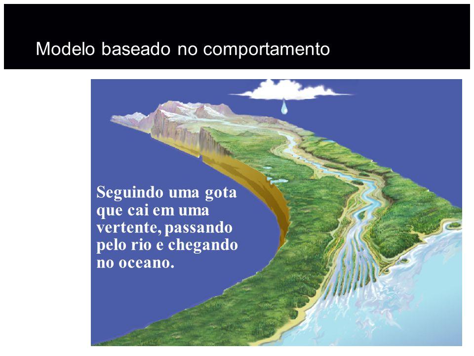 Adjoint catchments Adjoint catchments são polígonos de bacias a montante de cada catchment.