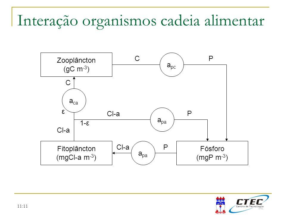 11:11 Interação organismos cadeia alimentar Zooplâncton (gC m -3 ) Fitoplâncton (mgCl-a m -3 ) Fósforo (mgP m -3 ) a pa a pc a ca Cl-a C ε a pa Cl-a P