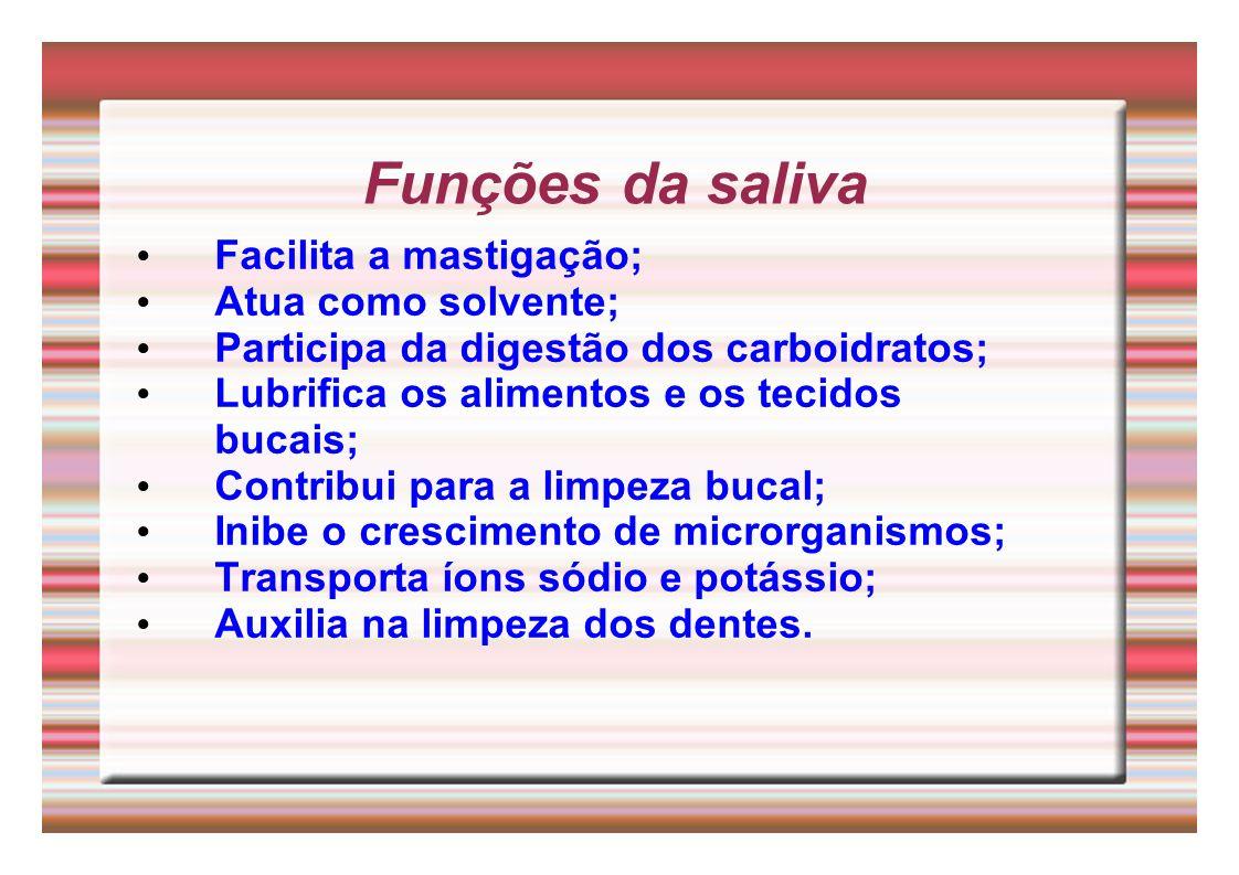 Funções da saliva Facilita a mastigação; Atua como solvente; Participa da digestão dos carboidratos; Lubrifica os alimentos e os tecidos bucais; Contr
