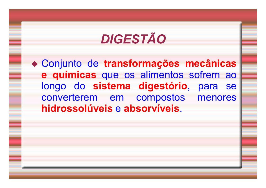DIGESTÃO Conjunto de transformações mecânicas e químicas que os alimentos sofrem ao longo do sistema digestório, para se converterem em compostos meno