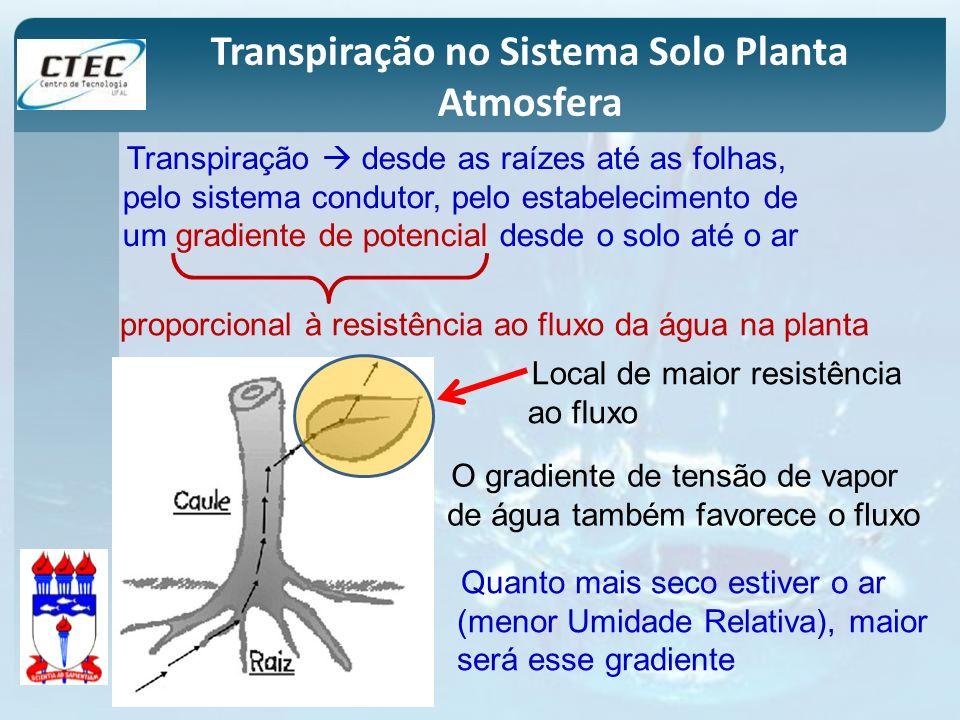Transpiração desde as raízes até as folhas, pelo sistema condutor, pelo estabelecimento de um gradiente de potencial desde o solo até o ar Transpiraçã