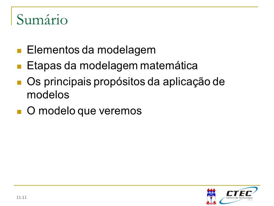 11:11 Sumário Elementos da modelagem Etapas da modelagem matemática Os principais propósitos da aplicação de modelos O modelo que veremos
