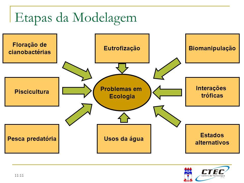 11:11 Etapas da Modelagem Problemas em Ecologia Biomanipulação Interações tróficas Estados alternativos Usos da águaPesca predatória Piscicultura Flor