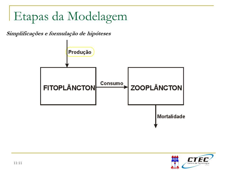 11:11 Etapas da Modelagem Simplificações e formulação de hipóteses