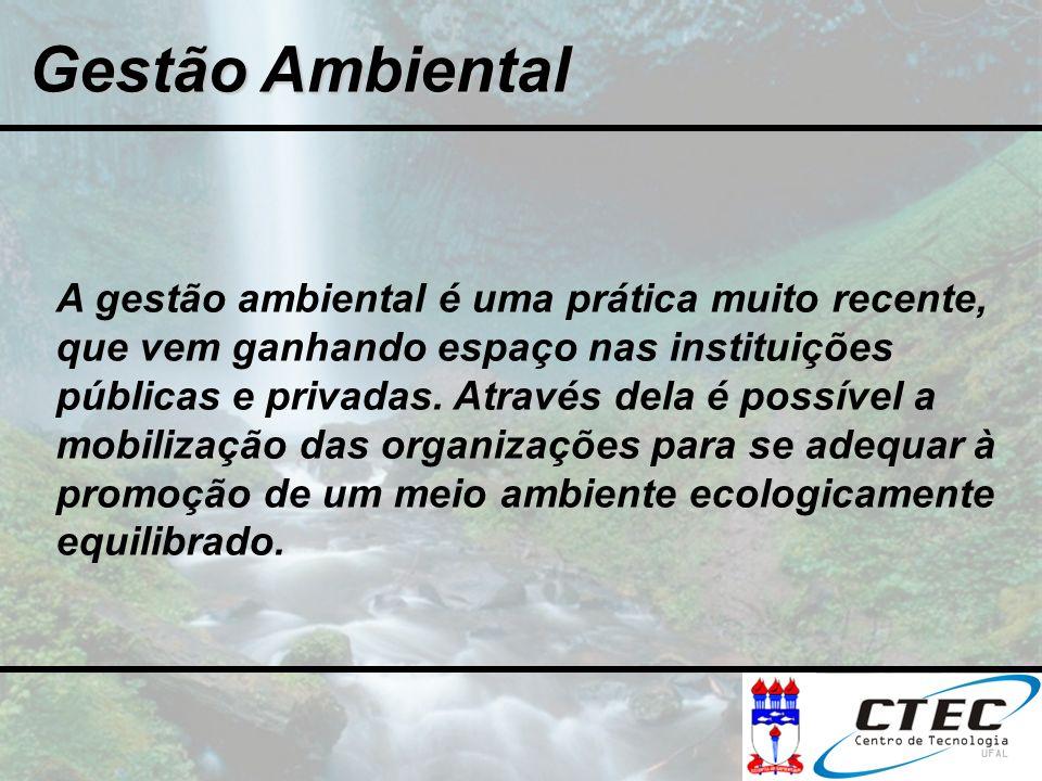 Gestão Ambiental A gestão ambiental é uma prática muito recente, que vem ganhando espaço nas instituições públicas e privadas. Através dela é possível