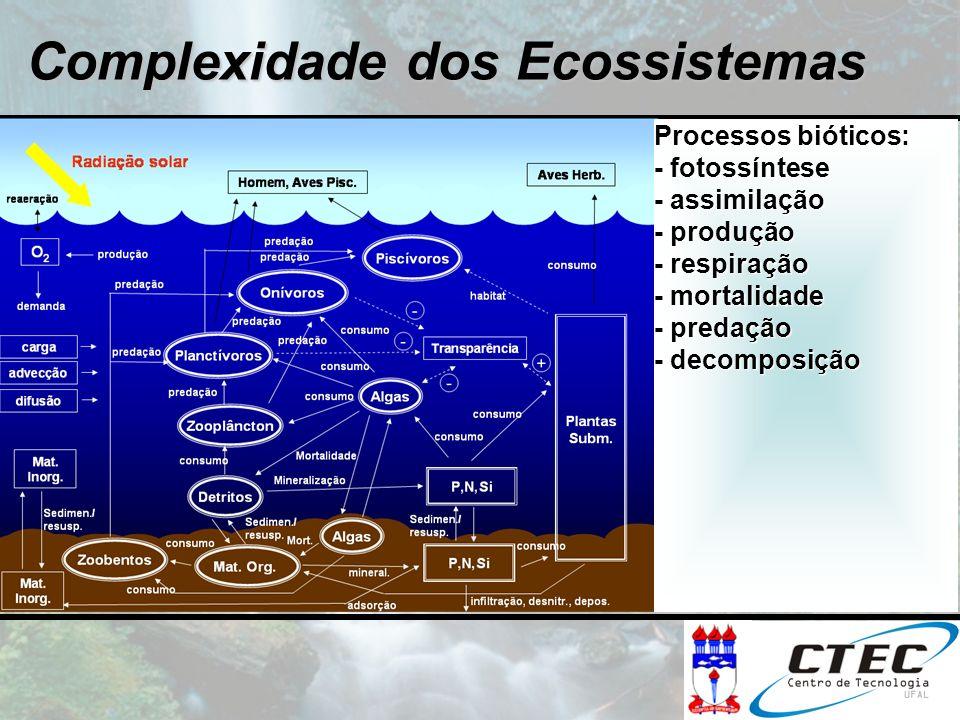 Processos bióticos: - fotossíntese - assimilação - produção - respiração - mortalidade - predação - decomposição Processos bióticos: - fotossíntese -