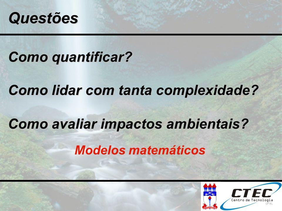 Como quantificar? Modelos matemáticos Como lidar com tanta complexidade? Como avaliar impactos ambientais? Questões