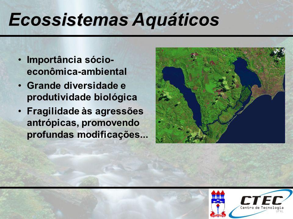Ecossistemas Aquáticos Importância sócio- econômica-ambiental Grande diversidade e produtividade biológica Fragilidade às agressões antrópicas, promov