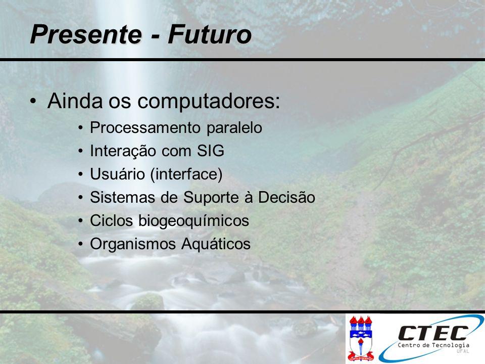 Ainda os computadores: Processamento paralelo Interação com SIG Usuário (interface) Sistemas de Suporte à Decisão Ciclos biogeoquímicos Organismos Aqu