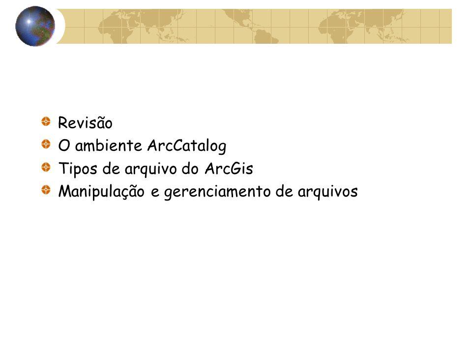 Revisão O ambiente ArcCatalog Tipos de arquivo do ArcGis Manipulação e gerenciamento de arquivos
