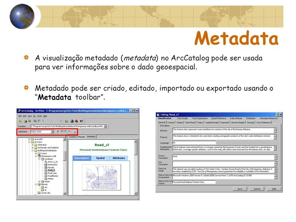 Metadata A visualização metadado (metadata) no ArcCatalog pode ser usada para ver informações sobre o dado geoespacial. Metadado pode ser criado, edit