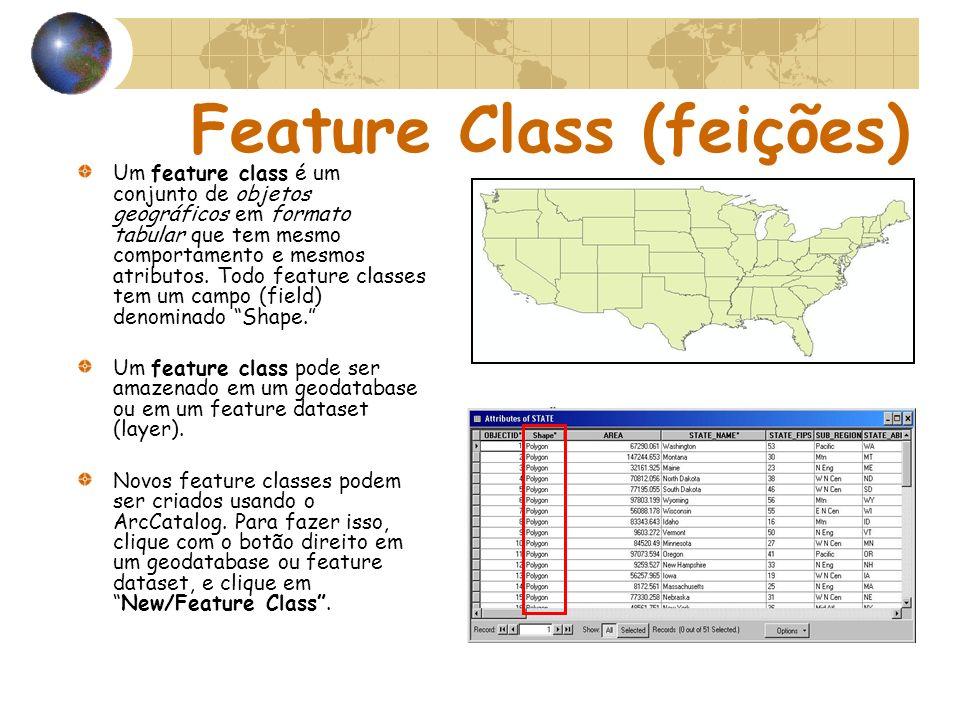 Feature Class (feições) Um feature class é um conjunto de objetos geográficos em formato tabular que tem mesmo comportamento e mesmos atributos. Todo