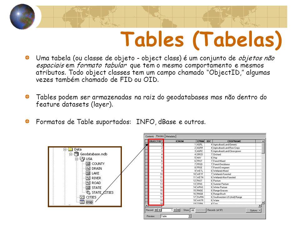 Tables (Tabelas) Uma tabela (ou classe de objeto - object class) é um conjunto de objetos não espaciais em formato tabular que tem o mesmo comportamen
