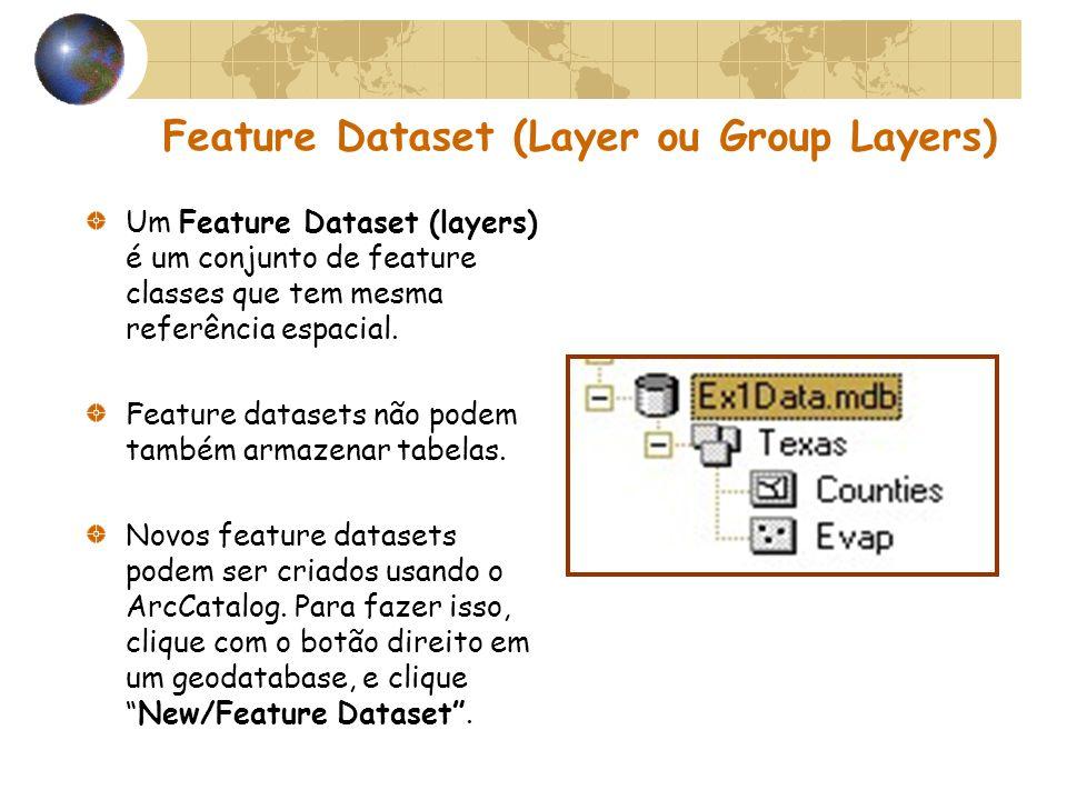 Feature Dataset (Layer ou Group Layers) Um Feature Dataset (layers) é um conjunto de feature classes que tem mesma referência espacial. Feature datase