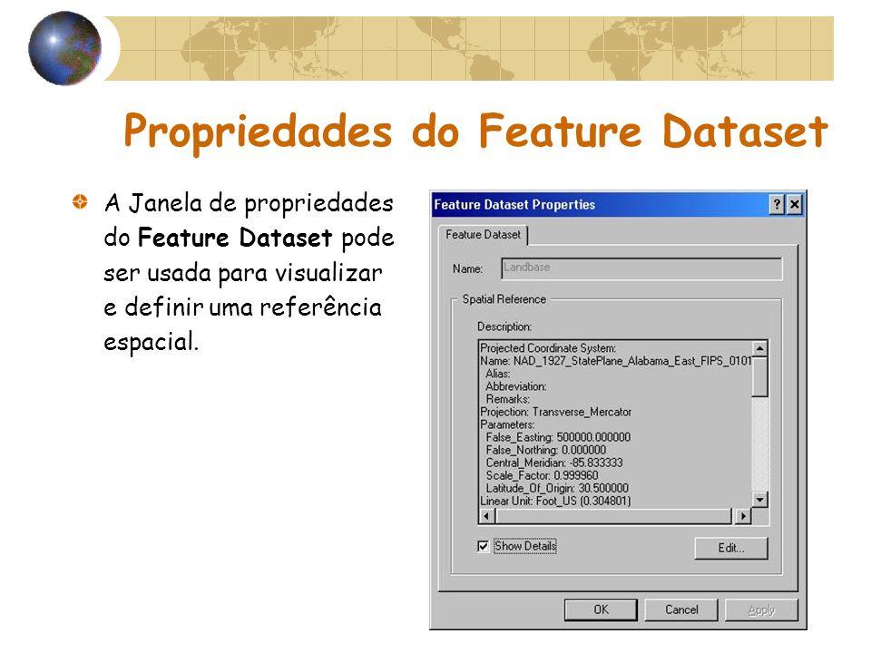 Propriedades do Feature Dataset A Janela de propriedades do Feature Dataset pode ser usada para visualizar e definir uma referência espacial.