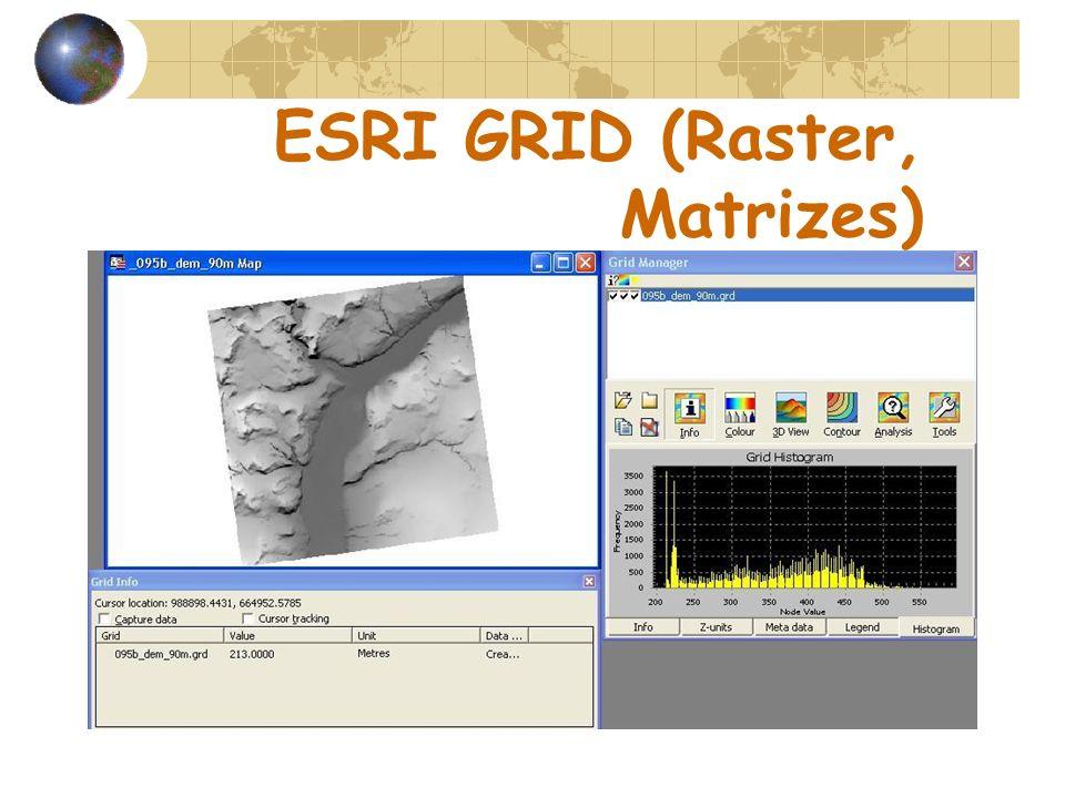 ESRI GRID (Raster, Matrizes)