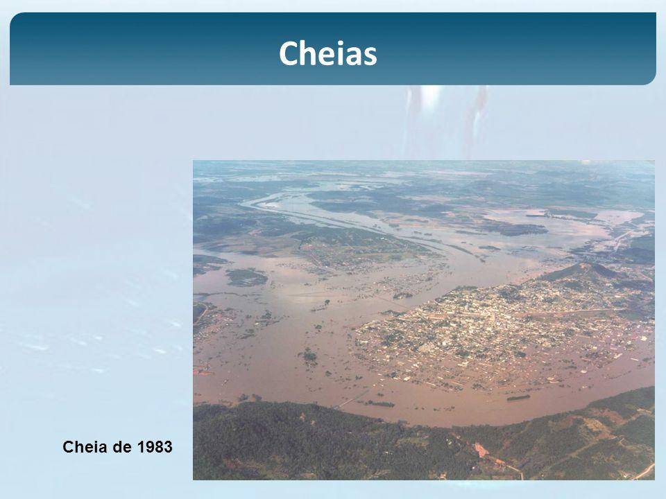 Cheia de 1983 Cheias