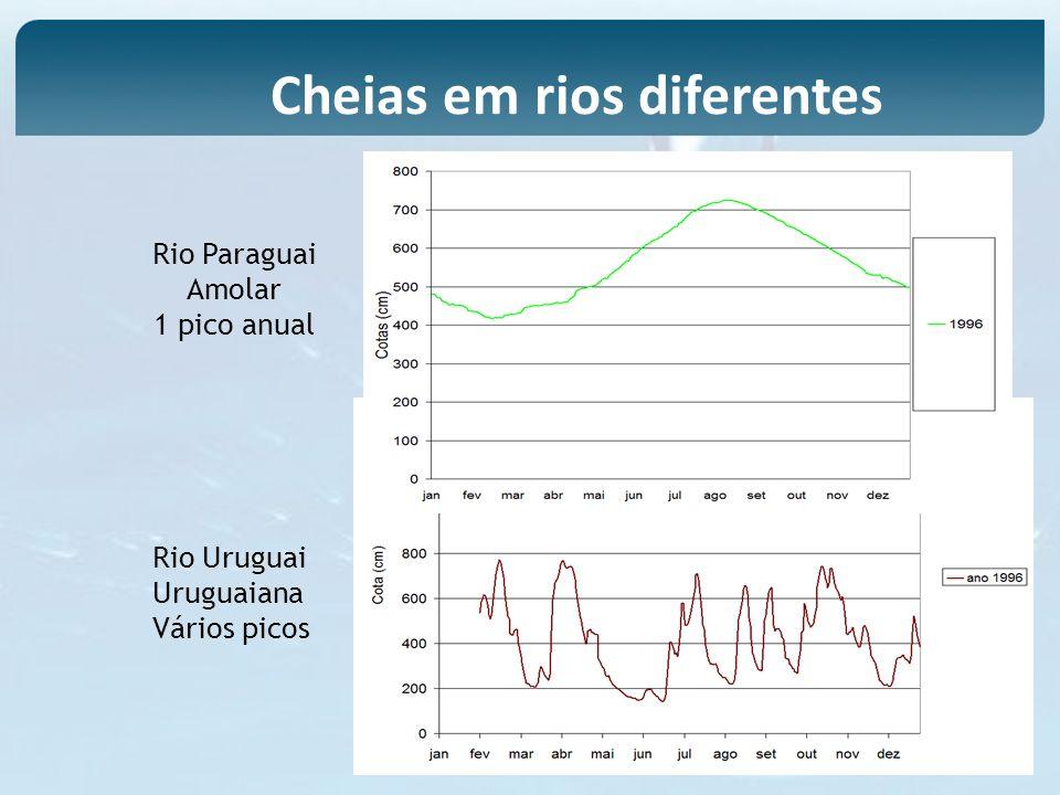 Rio Paraguai Amolar 1 pico anual Rio Uruguai Uruguaiana Vários picos Cheias em rios diferentes