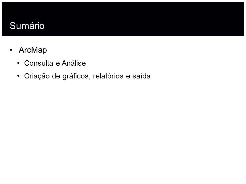 Sumário 2 ArcMap Consulta e Análise Criação de gráficos, relatórios e saída