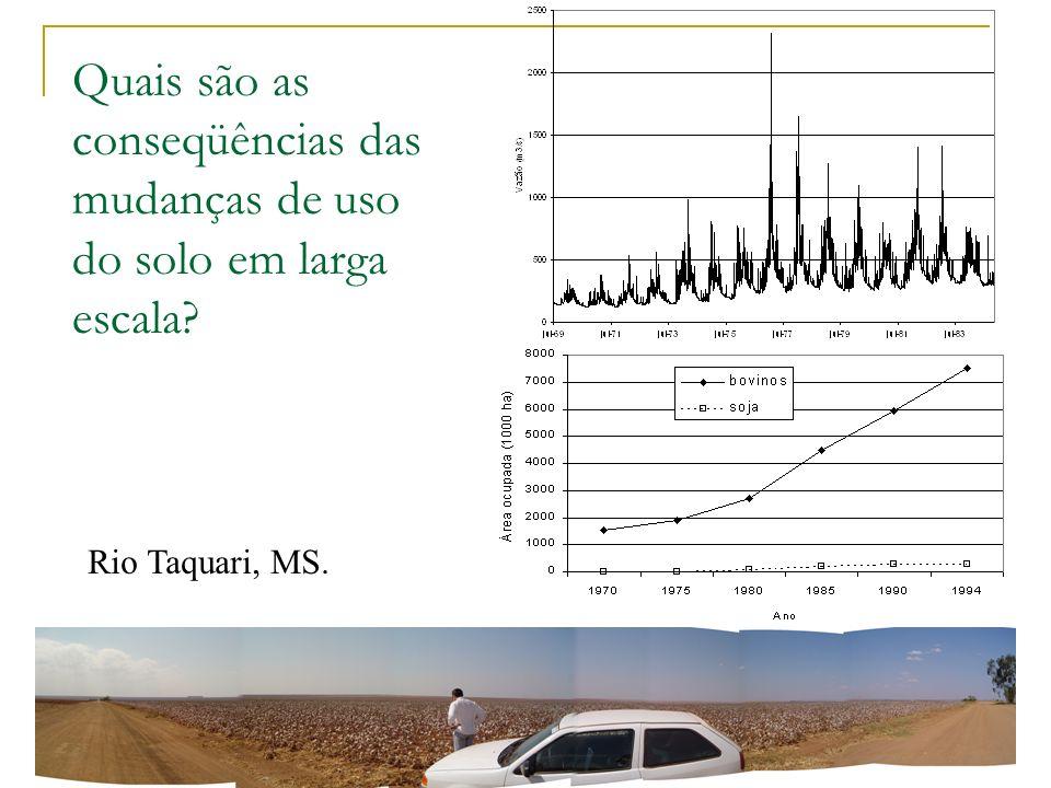 Quais são as conseqüências das mudanças de uso do solo em larga escala? Rio Taquari, MS.