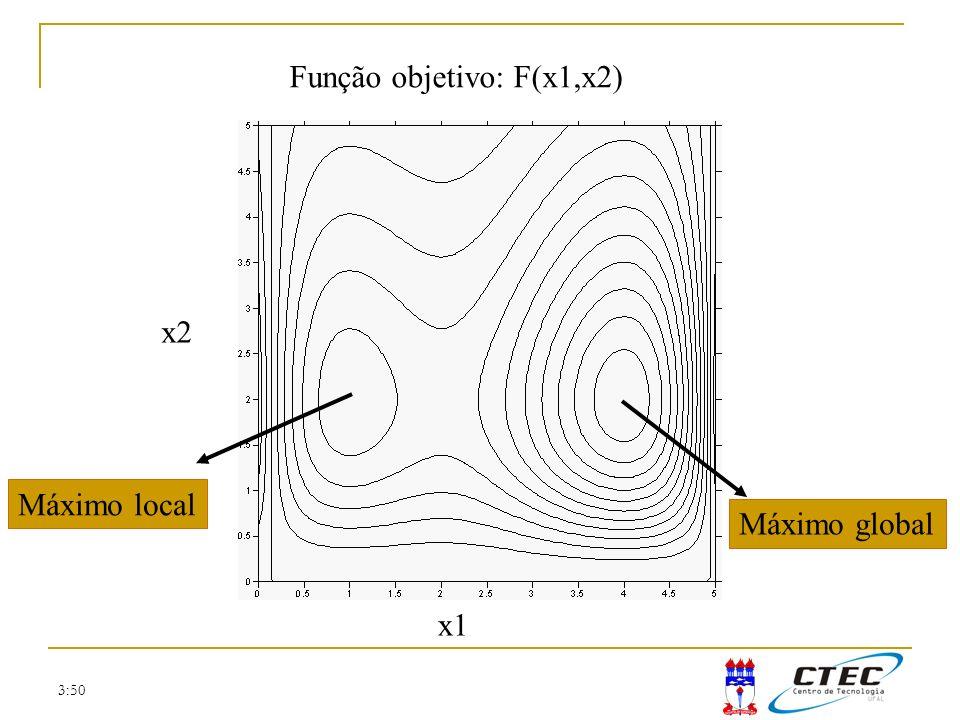 3:50 Máximo global Máximo local Função objetivo: F(x1,x2) x1 x2