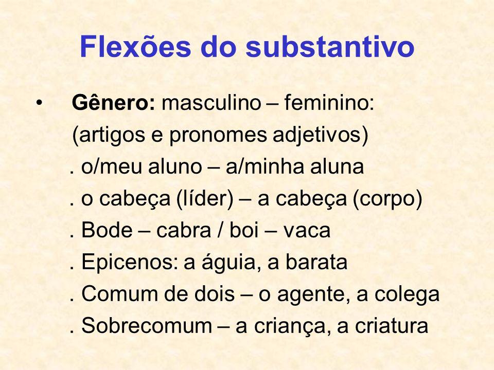 Flexões do substantivo Gênero: masculino – feminino: (artigos e pronomes adjetivos). o/meu aluno – a/minha aluna. o cabeça (líder) – a cabeça (corpo).