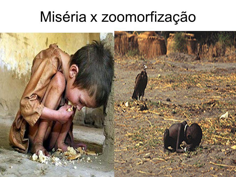 Miséria x zoomorfização
